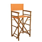 ZEW High Director Folding Patio Dining Chair (Set of 2); Orange