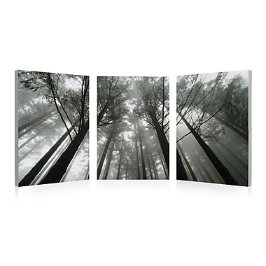 3 Panel Photo Looking Up 3 Piece Photographic Print on Vinyl Set; 28'' H x 84'' W x 1'' D