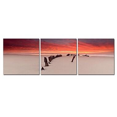 3 Panel Photo Path through The Beach 3 Piece Photographic Print Set
