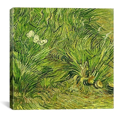iCanvas ''Two White Butterflies'' by Vincent Van Gogh Painting Print on Wrapped Canvas