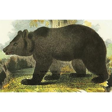 Belle Banquet Bear Placemat (Set of 6)