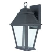 Feit Electric Integrated 1-Light Outdoor Wall Lantern; Clear Glass