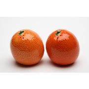 CosmosGifts Orange Salt and Pepper Set