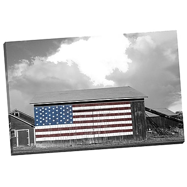 Portfolio Canvas Flags of the Farmers 1 by James McLoughlin Photographic Print on Wrapped Canvas