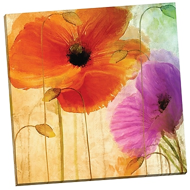 Portfolio Canvas Penchant for Poppies II by Mindy Sommers Painting Print on Wrapped Canvas