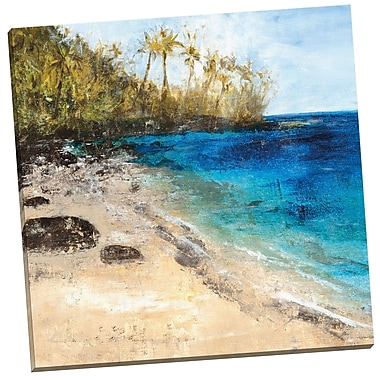 Portfolio Canvas Pristine Coast by Vivian Canbelle Painting Print on Wrapped Canvas