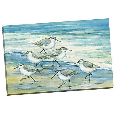 Portfolio Canvas Surfside Sandpiper by Paul Brent Painting Print on Wrapped Canvas
