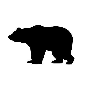 Dana Decals Tiny Bear Wall Decal (Set of 50)