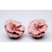 CosmosGifts Hibiscus Rosa Salt and Pepper Set