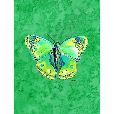 Caroline's Treasures Butterfly Green on Green 2-Sided Garden Flag