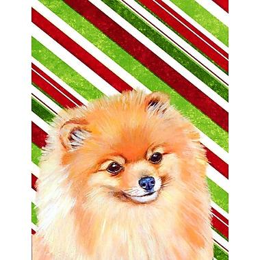 Caroline's Treasures Pomeranian Candy Cane Holiday Christmas 2-Sided Garden Flag