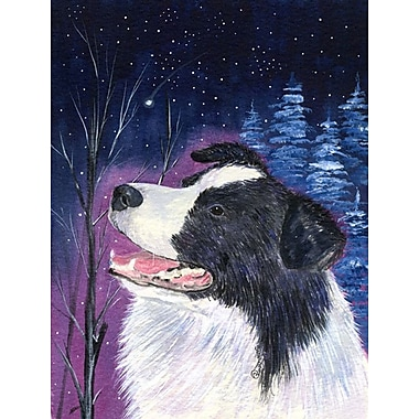 Caroline's Treasures Starry Night Border Collie 2-Sided Garden Flag