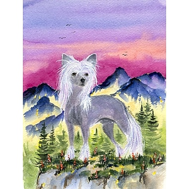 Caroline's Treasures Chinese Crested House Vertical Flag