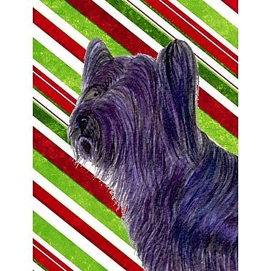 Caroline's Treasures Skye Terrier Candy Cane Holiday Christmas 2-Sided Garden Flag