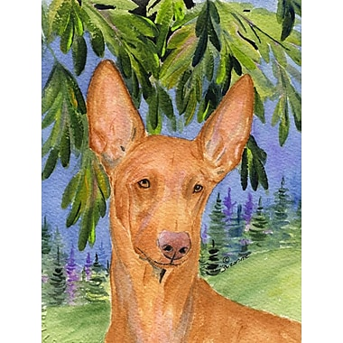 Caroline's Treasures Pharaoh Hound 2-Sided Garden Flag