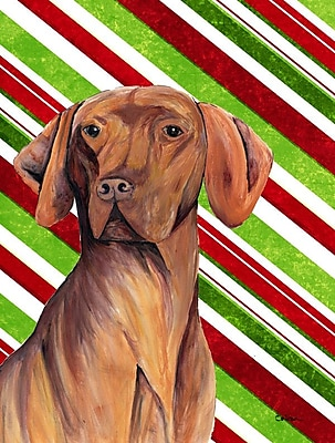 Caroline's Treasures Vizsla Candy Cane Holiday Christmas 2-Sided Garden Flag