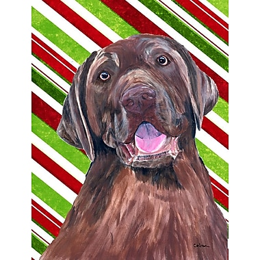 Caroline's Treasures Labrador Candy Cane Holiday Christmas 2-Sided Garden Flag