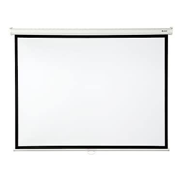Loch Matte White 100'' diagonal Manual Projection Screen