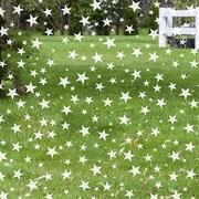 Odhams Press Star Struck Decorative Window Film; 45'' H x 36'' W