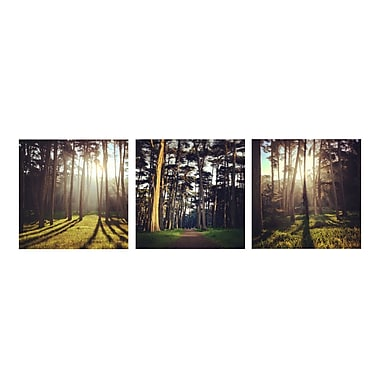 3 Panel Photo A Gleam Through the Trees by Dirka 3 Piece Photographic Print on Wrapped Canvas Set