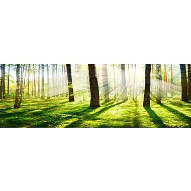 3 Panel Photo Brilliant Sun Photographic Print on Wrapped Canvas