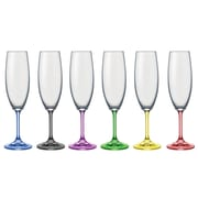 David Shaw Silverware Rainbow Champagne Flute (Set of 6)