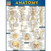 BarCharts, Inc. - QuickStudy® Medical Terminology Reference Set
