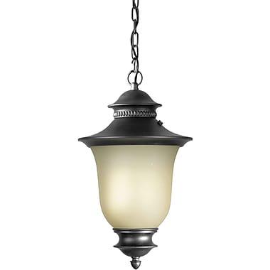 Forte Lighting 1-Light Outdoor Pendant; Black