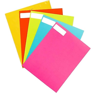JAM Paper® Mailing Address Labels, 1 x 2.63, Assorted Bright Colours, 5 packs of 120, 600/set (30272ASST12)