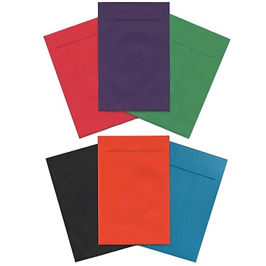 JAM Paper® 6 x 9 Open End Envelopes, Brite Hue Assorted, 60/Pack (8810ASSRTD)