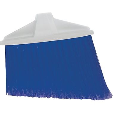 Stiff Angled Broom, Colour, Blue, Size