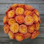 The Bouqs Company Dawn Roses
