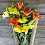 The Bouqs Company Sunshine Twins Lilies