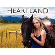 Heartland: Season 8 (DVD)