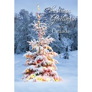 Greeting from Canada, Christmas Ornaments, 18/Pack