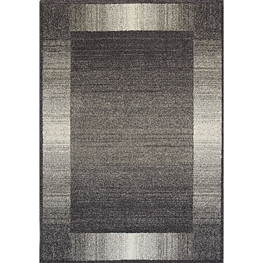 Kalora Ashbury Almandy Gray Area Rug; 2' x 3'7''