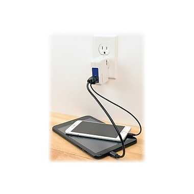 Tripp Lite 17 W USB Wall/Travel Charger, Blue/White (U280-002-W12)