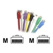 CP Technologies ClearLinks™ C6-BL-07-M 7' RJ-45 Male/Male Cat 6 Molded Snagless Patch Cable, Blue