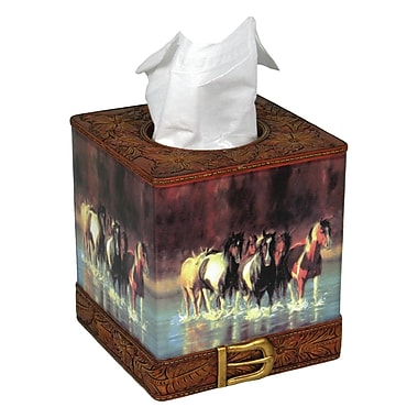 American Expedition Rush Hour Tissue Box Cover