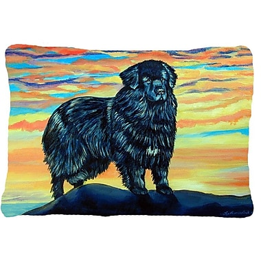 Caroline's Treasures Newfoundland Indoor/Outdoor Throw Pillow