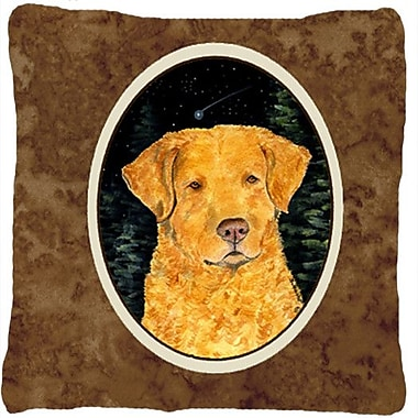 Caroline's Treasures Starry Night Chesapeake Bay Retriever Indoor/Outdoor Throw Pillow