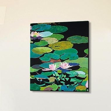 Tori Home Artisbe Blairs Magical Pond by Allan P. Friedlander Painting Print on Canvas