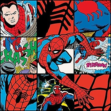 iCanvas Marvel Comics Spider-Man Collage Poster Graphic Art on Canvas; 12'' H x 12'' W x 1.5'' D