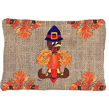 Caroline's Treasures Thanksgiving Turkey Pilgrim Fleur De Lis Indoor/Outdoor Throw Pillow