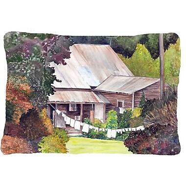 Caroline's Treasures Wash Day Indoor/Outdoor Throw Pillow