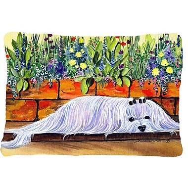 Caroline's Treasures Maltese Indoor/Outdoor Throw Pillow