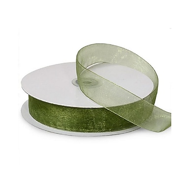 B2B Wraps Organza Sheer Ribbon, 7/8