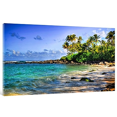 HadleyHouseCo Turtle Beach by Kelly Wade Photographic Print on Wrapped Canvas