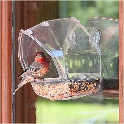 Birdscapes Window Decorative Bird Feeder (WYF078276503512) photo