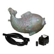 Koolatron – Trousse de poisson cracheur avec pompe et tubes de 100 gph